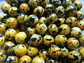 Kunststof-rond-12mm-oker-met-tijgerprint