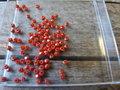 Glaskraal-rondel-facet-geslepen-imitatie-jade-3x2mm-rood
