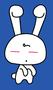 Strijkapplicatie-konijn-15-x-287cm